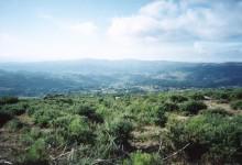 Corno de bico: turismo sustentável