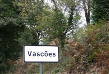 A origem dos Vasconços